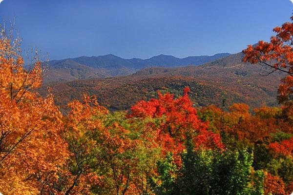 A stunning view of the vibrant fall colors in the Great Smoky Mountains