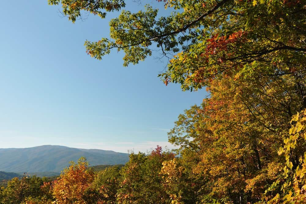 5 Adventures You Have to Take in the Great Smoky Mountains