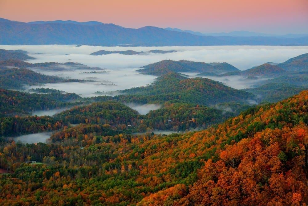 4 Reasons To Stay In A Pigeon Forge Or Gatlinburg Pet