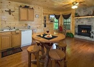 Paradise Cove - a Gatlinburg cabin under 100