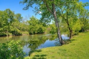 Scenic photo of the water taken near our Pigeon Forge rentals on the river.