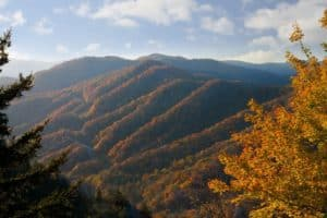 Fall colors in Newfound Gap in the Smoky Mountains.