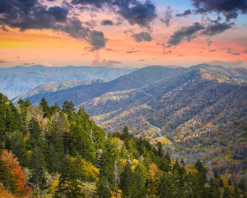 Top 5 Scenic Drives in the Smoky Mountains for Seeing the Fall Colors
