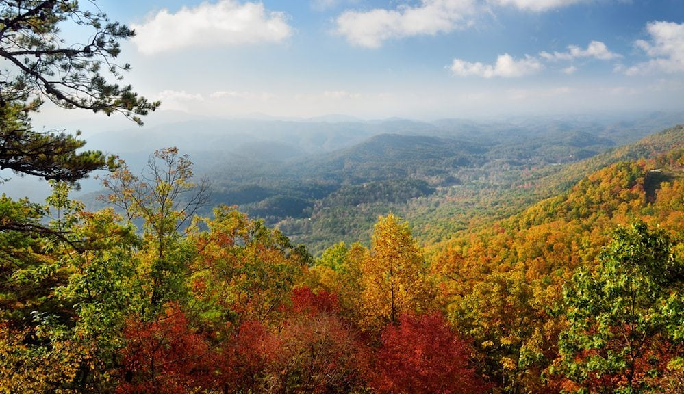 Trees with beautiful fall colors near Pigeon Forge in the Smoky Mountains.
