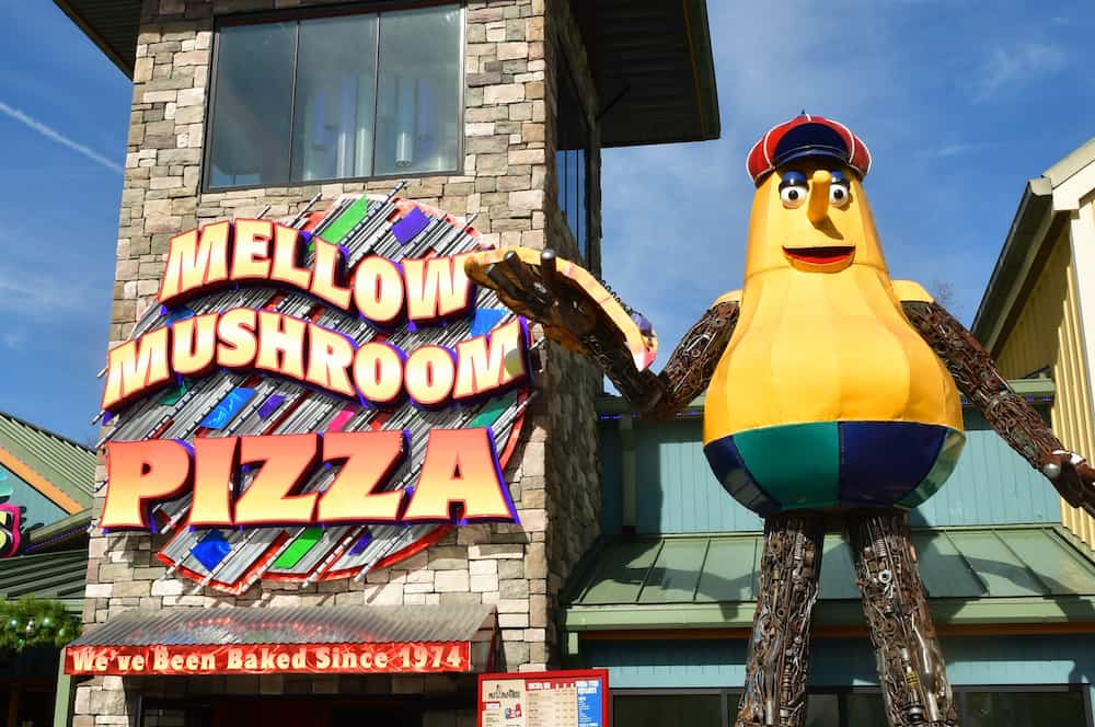 Top 4 Restaurants Where You Can Enjoy the Best Pizza in Pigeon Forge